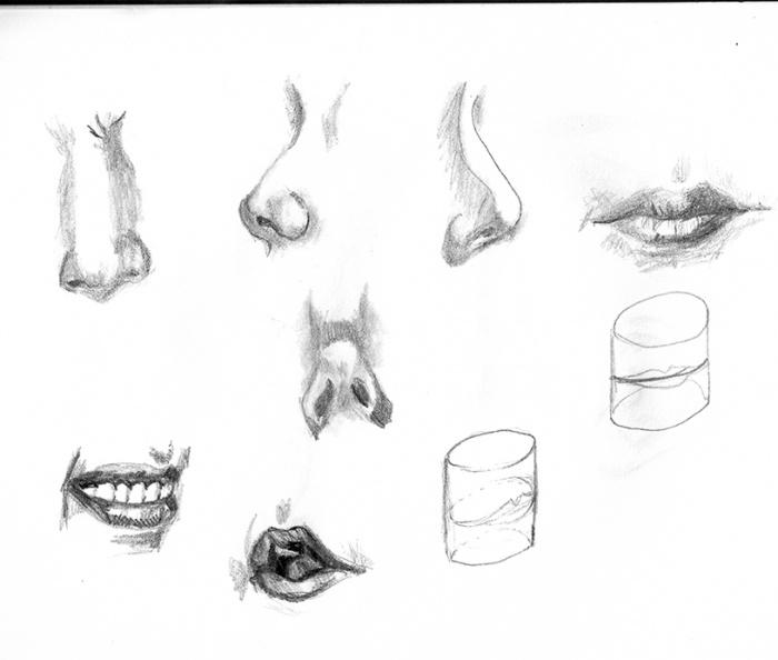 études nez bouche