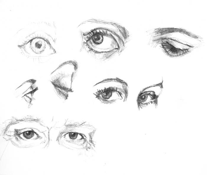 études regard